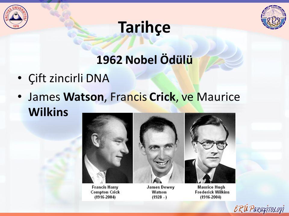 Tarihçe 1962 Nobel Ödülü Çift zincirli DNA