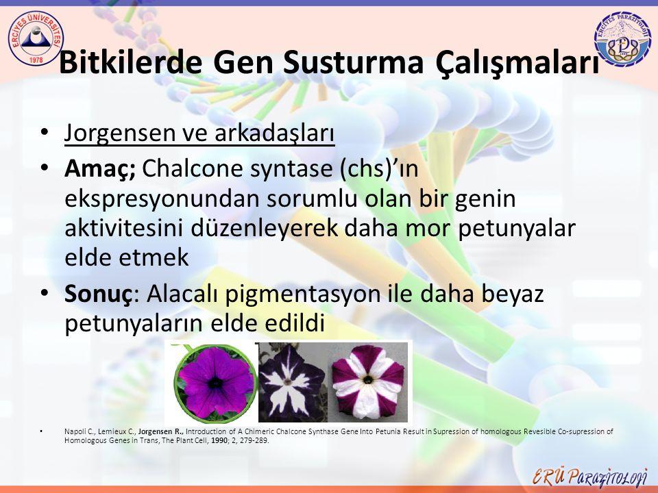 Bitkilerde Gen Susturma Çalışmaları