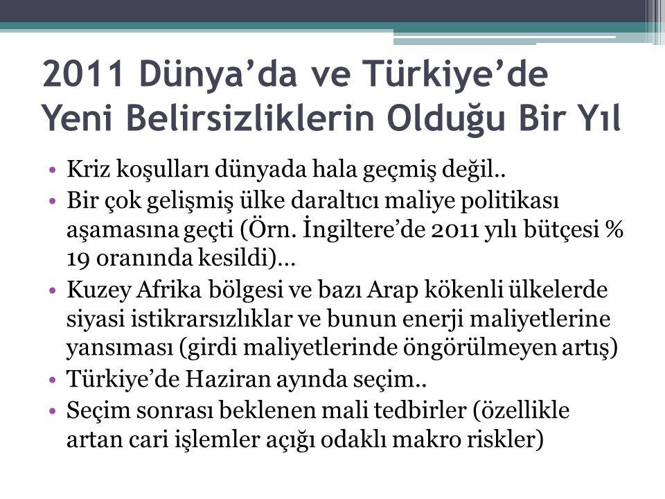 2011 Dünya'da ve Türkiye'de Yeni Belirsizliklerin Olduğu Bir Yıl