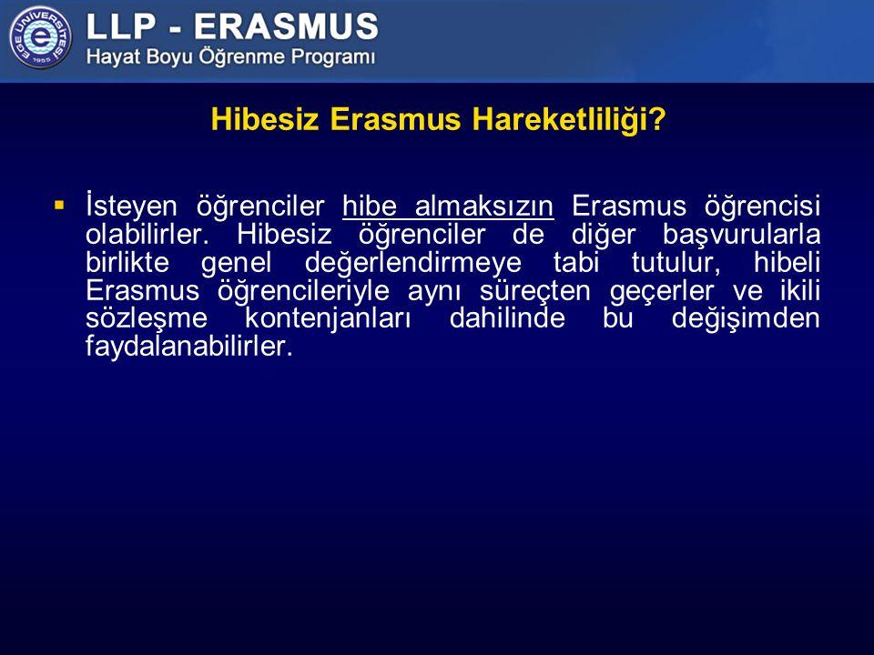 Hibesiz Erasmus Hareketliliği
