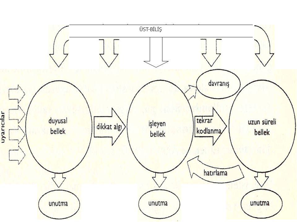 Bilgiyi işleme modelinin işleyişi