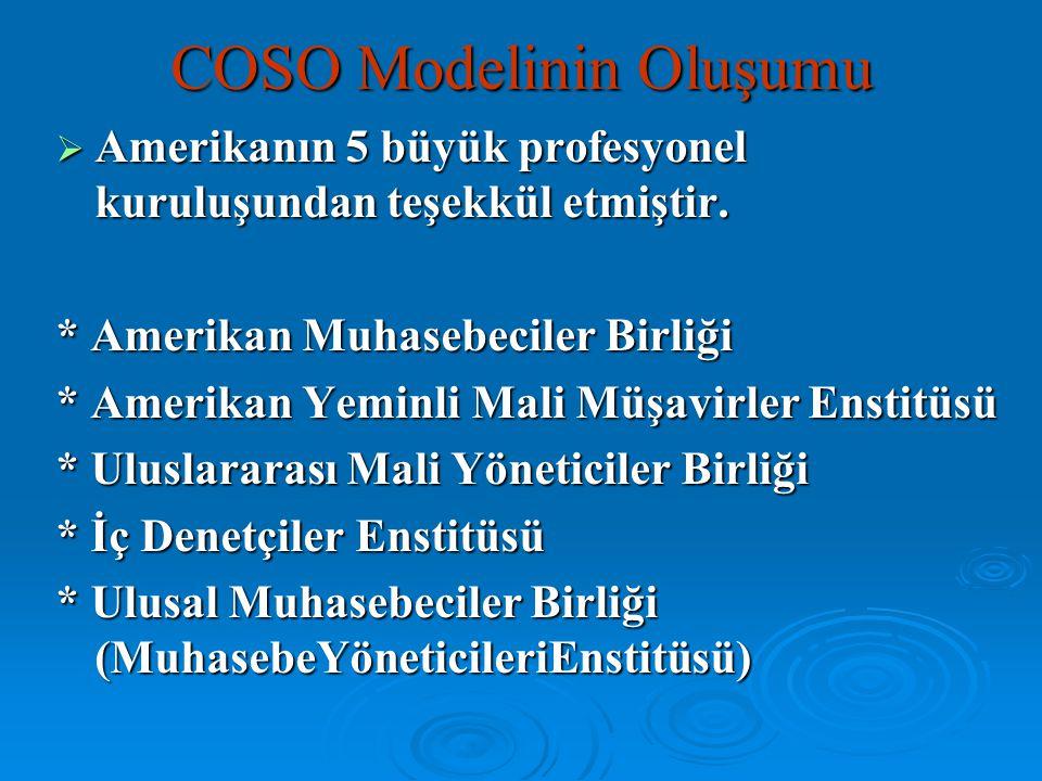 COSO Modelinin Oluşumu