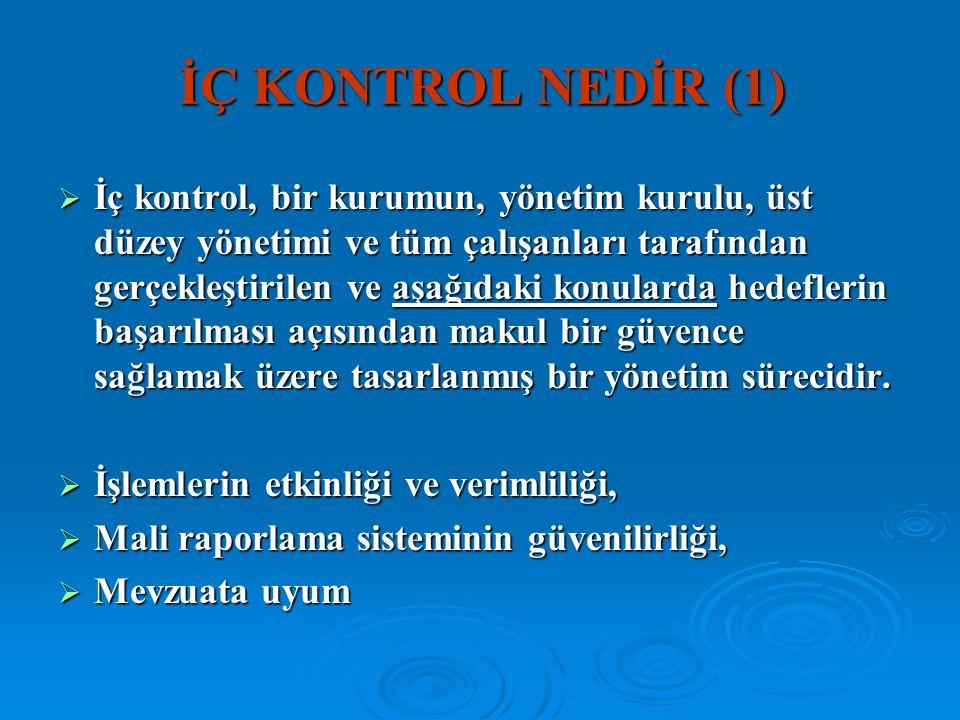 İÇ KONTROL NEDİR (1)