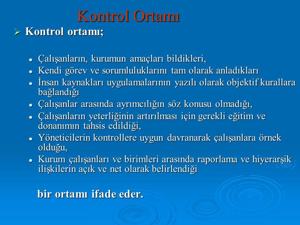 Kontrol Ortamı Kontrol ortamı; bir ortamı ifade eder.