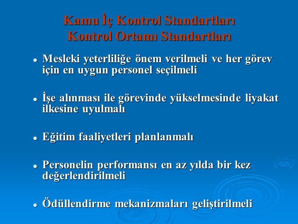 Kamu İç Kontrol Standartları Kontrol Ortamı Standartları