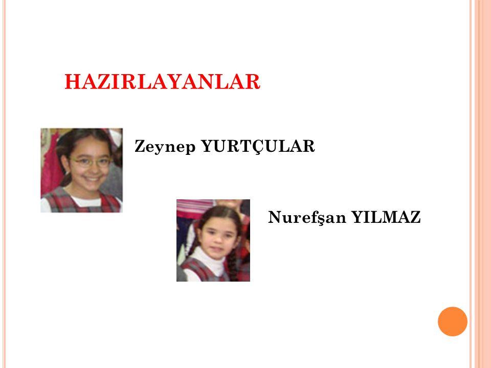 Zeynep YURTÇULAR Nurefşan YILMAZ