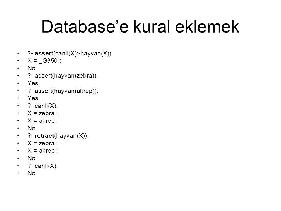 Database'e kural eklemek