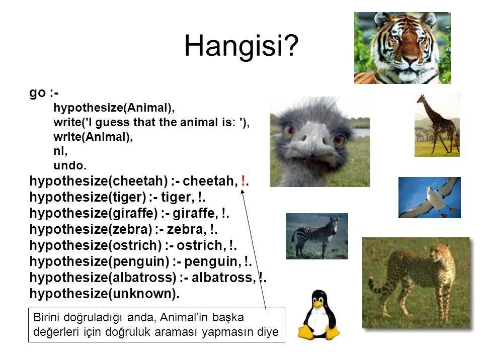 Hangisi go :- hypothesize(cheetah) :- cheetah, !.