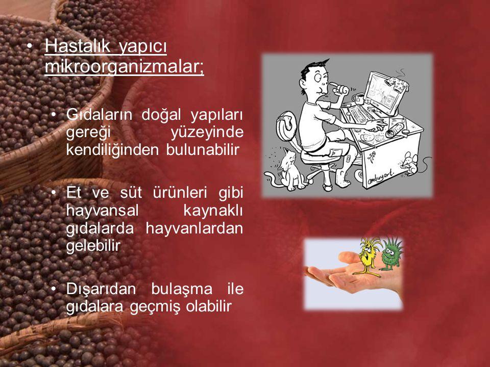 Hastalık yapıcı mikroorganizmalar;