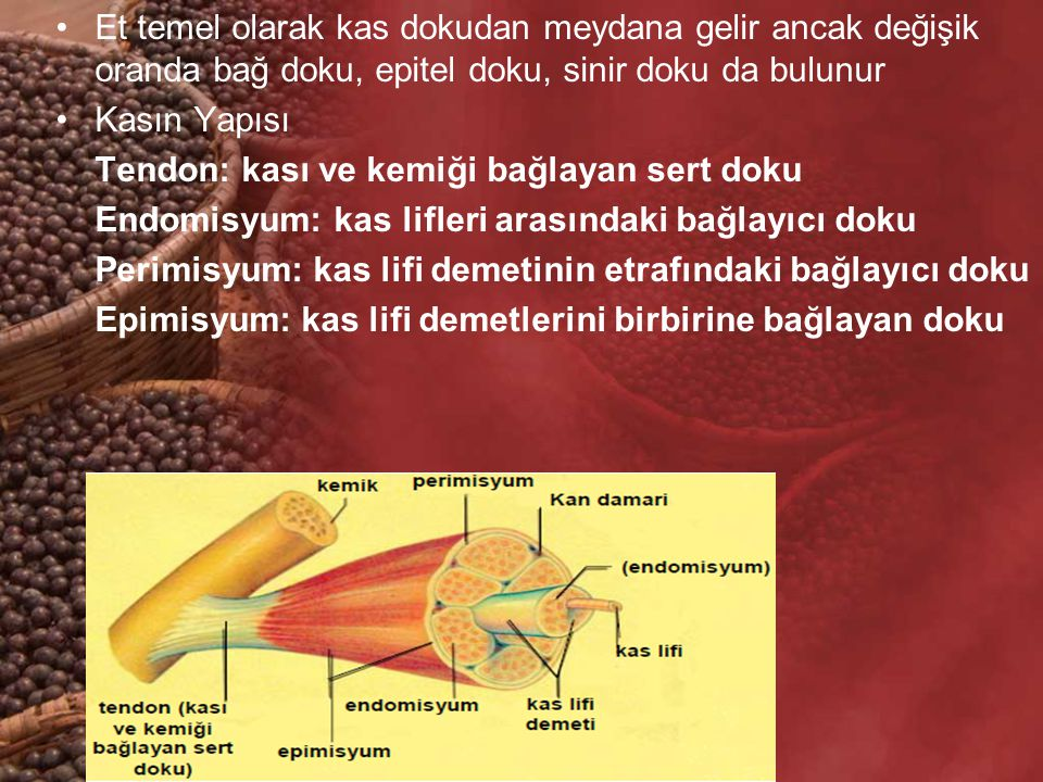 Et temel olarak kas dokudan meydana gelir ancak değişik oranda bağ doku, epitel doku, sinir doku da bulunur