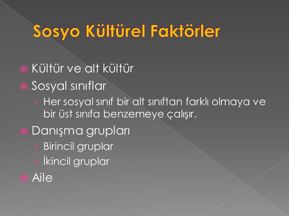Sosyo Kültürel Faktörler
