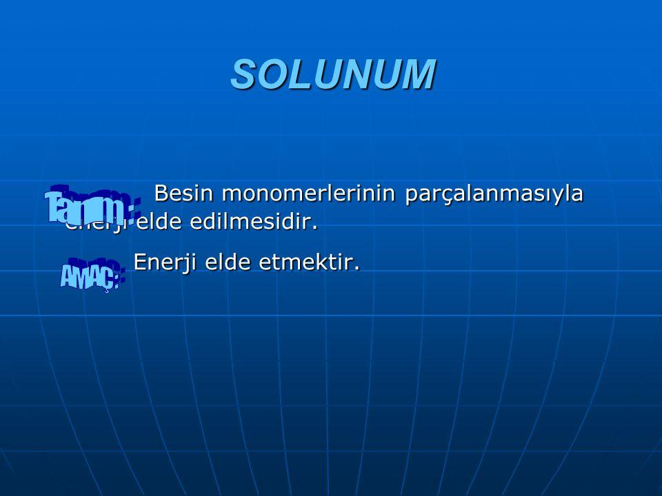 SOLUNUM Besin monomerlerinin parçalanmasıyla enerji elde edilmesidir.