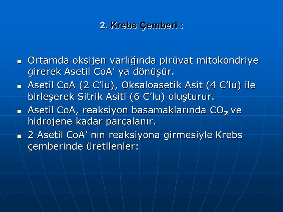 2. Krebs Çemberi : Ortamda oksijen varlığında pirüvat mitokondriye girerek Asetil CoA' ya dönüşür.
