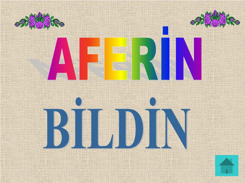 AFERİN BİLDİN