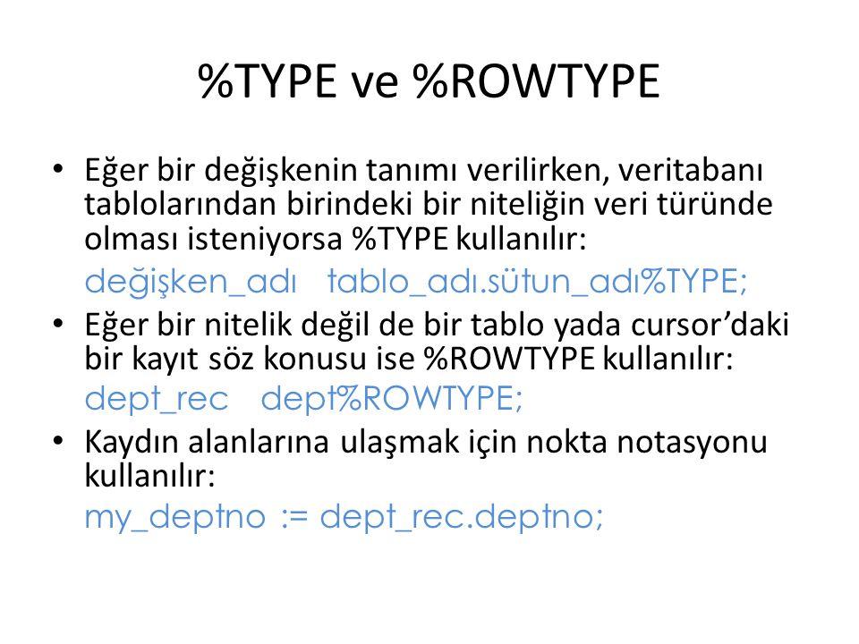 %TYPE ve %ROWTYPE