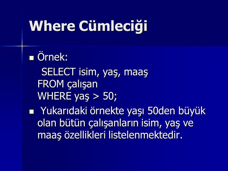 Where Cümleciği Örnek: