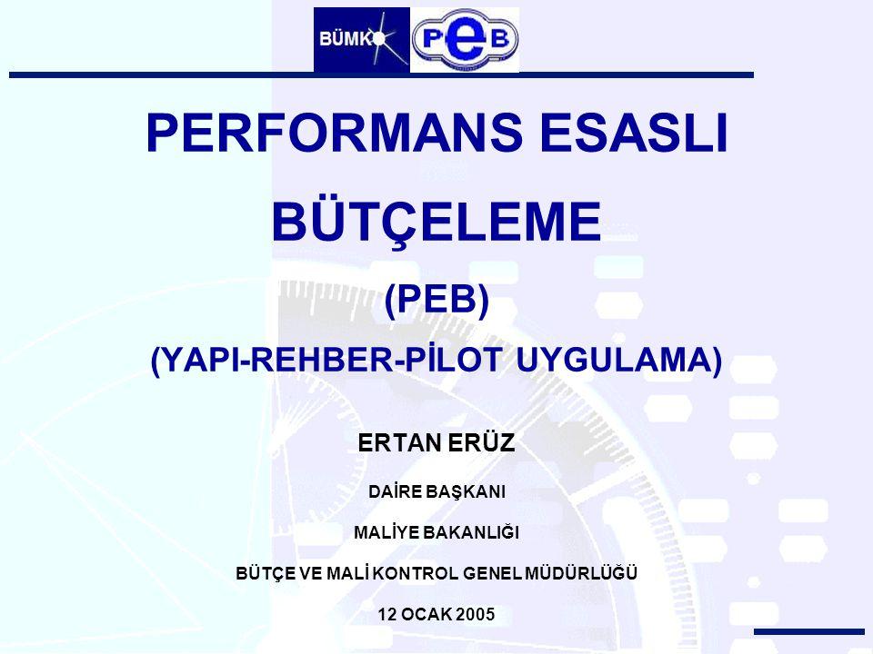 PERFORMANS ESASLI BÜTÇELEME (PEB) (YAPI-REHBER-PİLOT UYGULAMA)