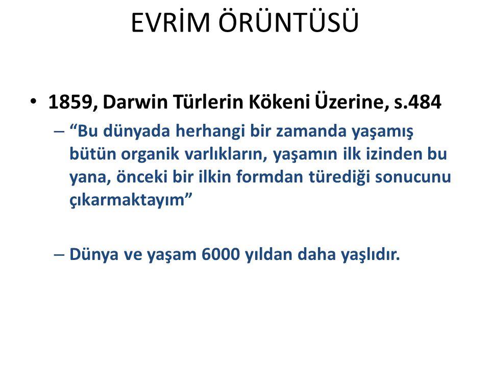 EVRİM ÖRÜNTÜSÜ 1859, Darwin Türlerin Kökeni Üzerine, s.484