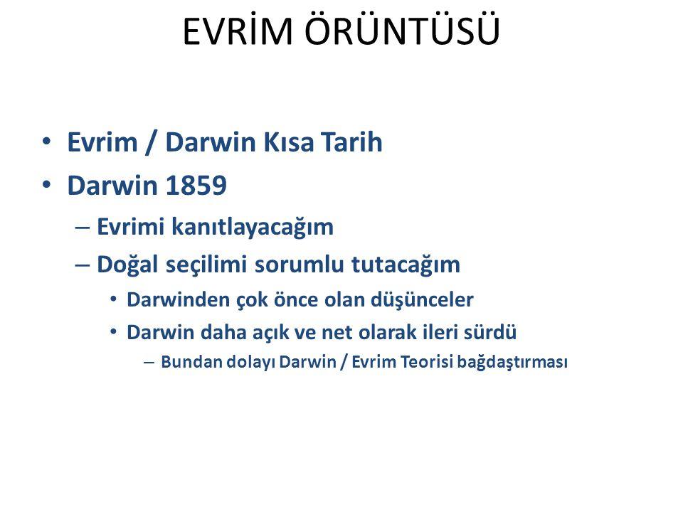 EVRİM ÖRÜNTÜSÜ Evrim / Darwin Kısa Tarih Darwin 1859
