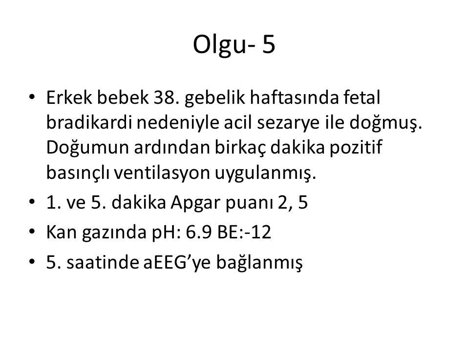 Olgu- 5
