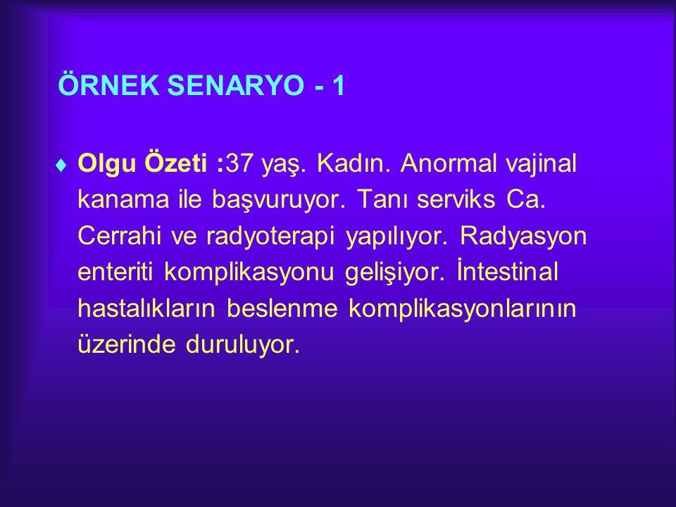 ÖRNEK SENARYO - 1