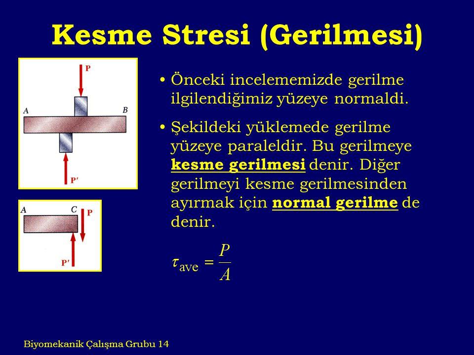 Kesme Stresi (Gerilmesi)