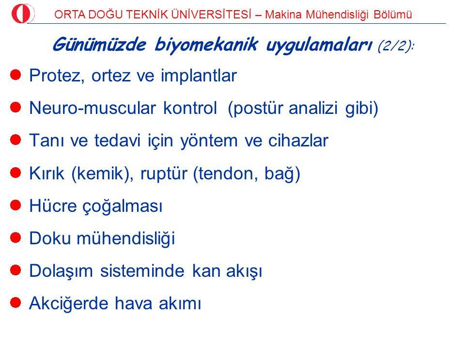 Günümüzde biyomekanik uygulamaları (2/2):