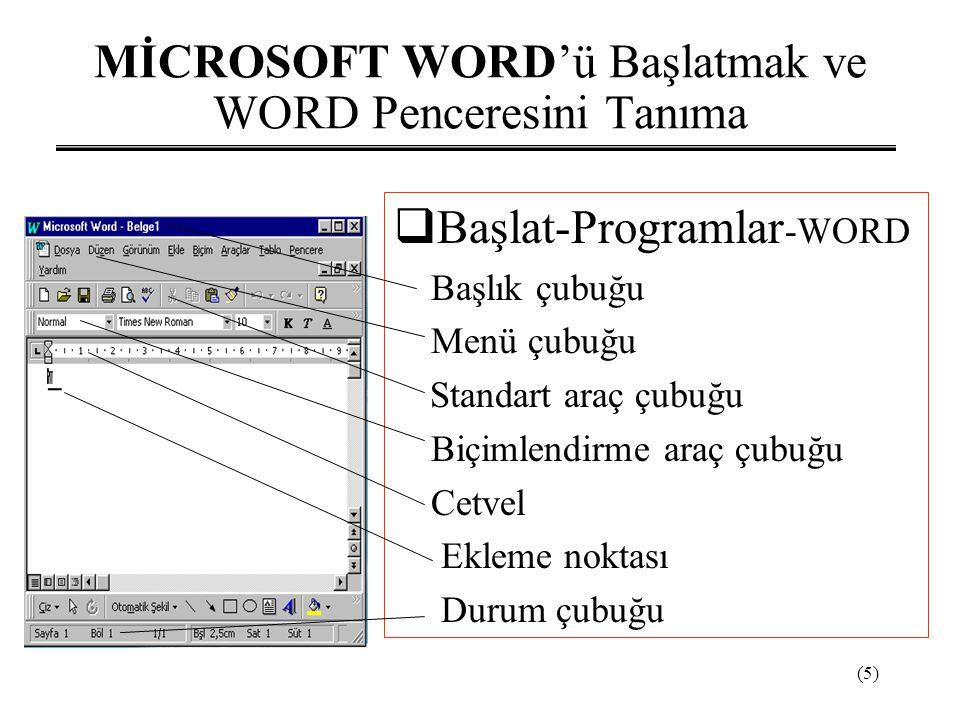 MİCROSOFT WORD'ü Başlatmak ve WORD Penceresini Tanıma