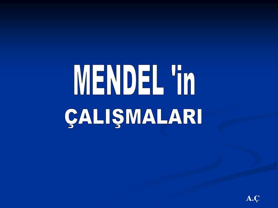 MENDEL in ÇALIŞMALARI A.Ç