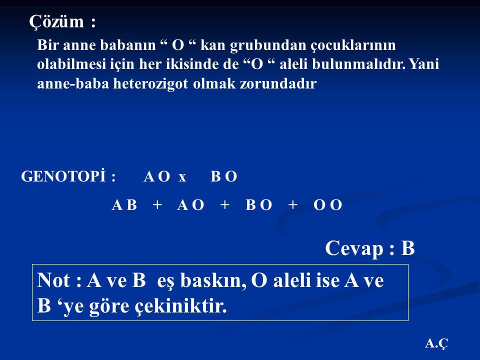 Not : A ve B eş baskın, O aleli ise A ve B 'ye göre çekiniktir.