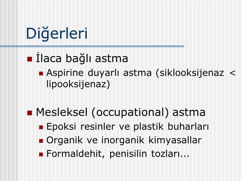 Diğerleri İlaca bağlı astma Mesleksel (occupational) astma