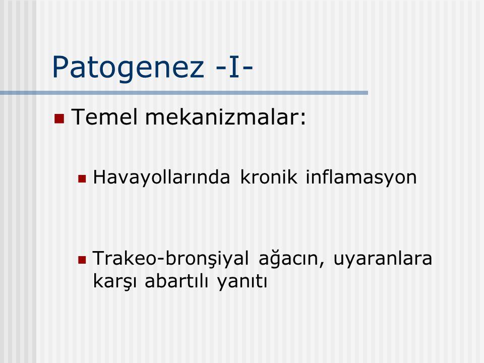 Patogenez -I- Temel mekanizmalar: Havayollarında kronik inflamasyon