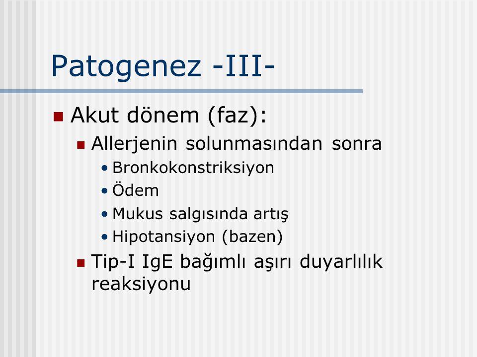 Patogenez -III- Akut dönem (faz): Allerjenin solunmasından sonra