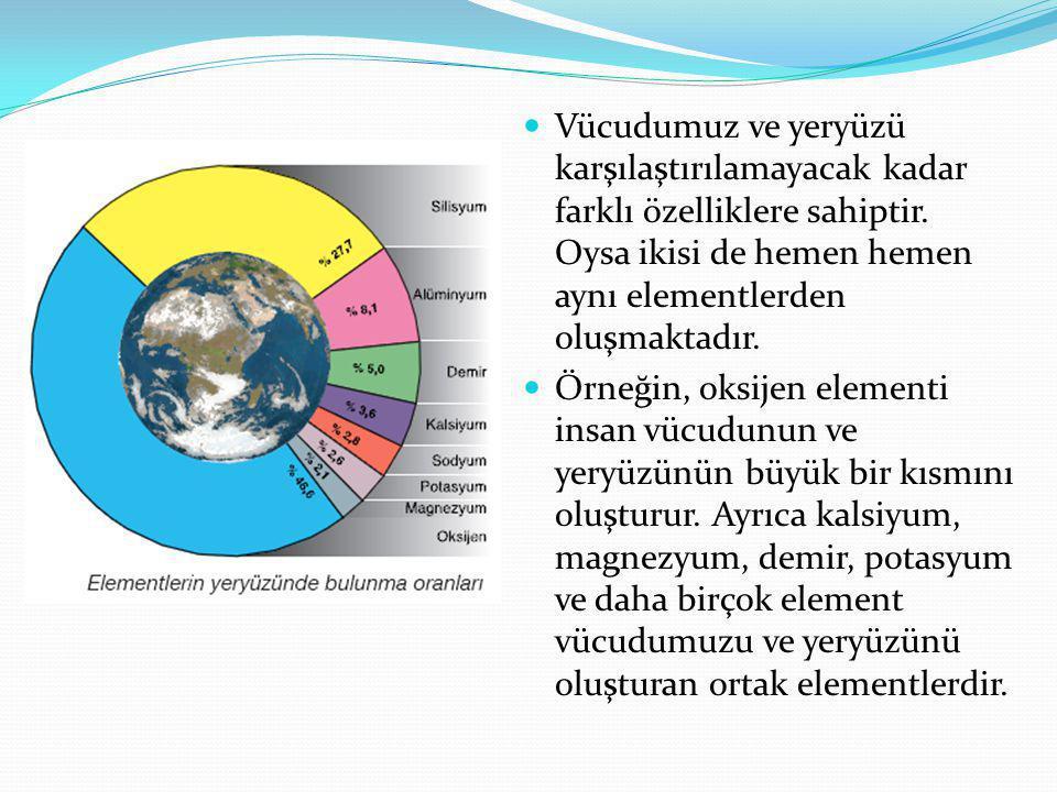 Vücudumuz ve yeryüzü karşılaştırılamayacak kadar farklı özelliklere sahiptir. Oysa ikisi de hemen hemen aynı elementlerden oluşmaktadır.