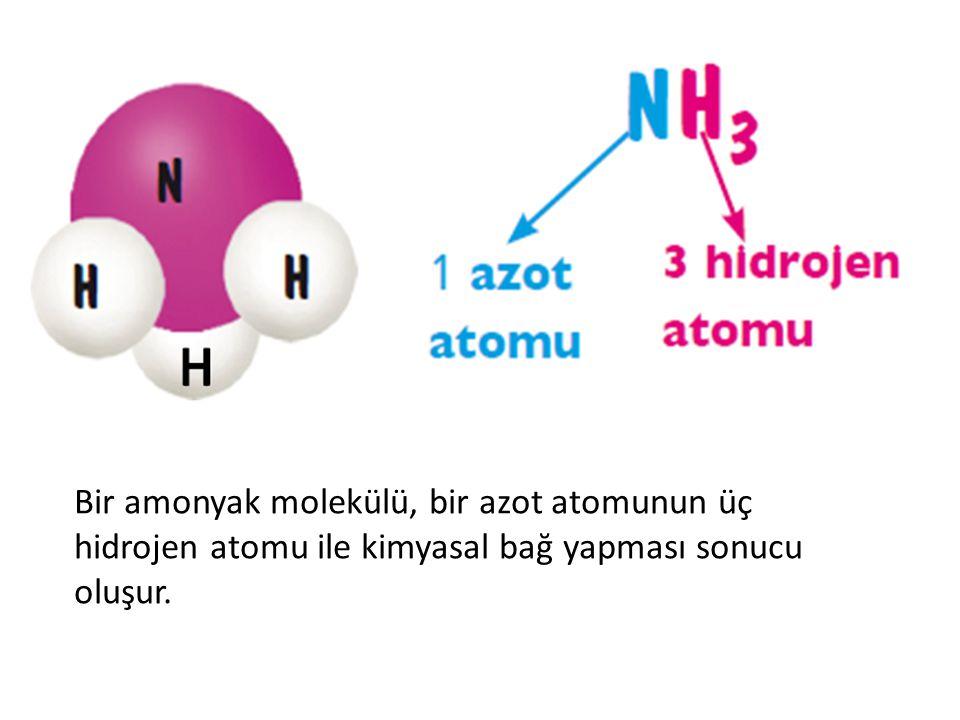 Bir amonyak molekülü, bir azot atomunun üç hidrojen atomu ile kimyasal bağ yapması sonucu oluşur.