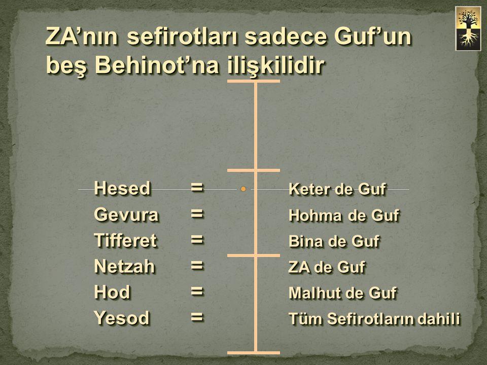 ZA'nın sefirotları sadece Guf'un beş Behinot'na ilişkilidir