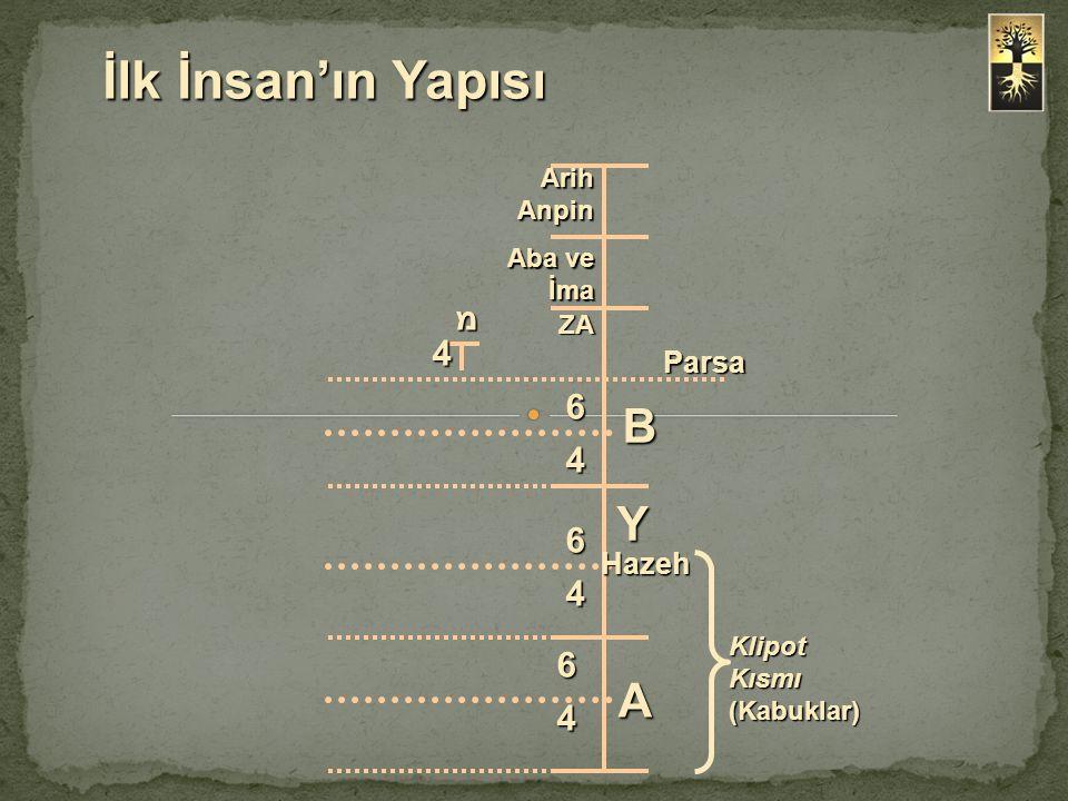 İlk İnsan'ın Yapısı B Y A מ 4 6 4 6 4 6 4 Parsa Hazeh Arih Anpin