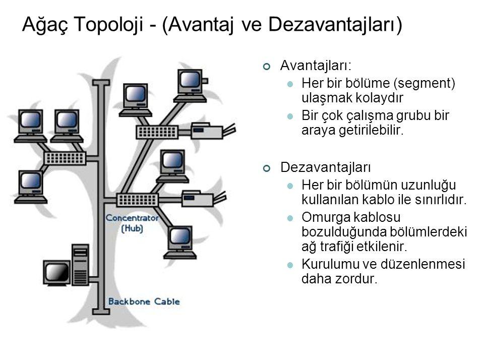Ağaç Topoloji - (Avantaj ve Dezavantajları)
