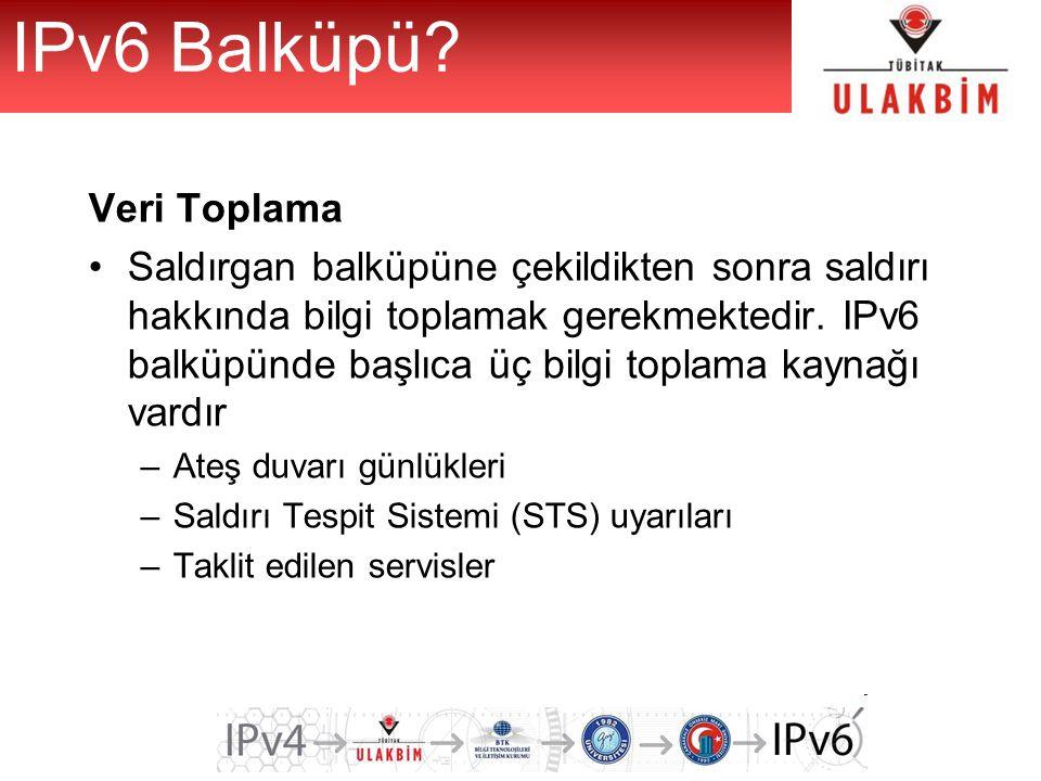 IPv6 Balküpü Veri Toplama