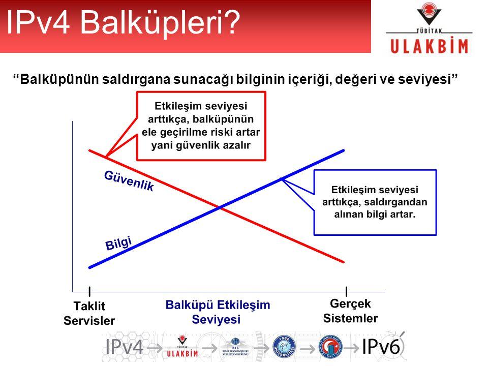 IPv4 Balküpleri Balküpünün saldırgana sunacağı bilginin içeriği, değeri ve seviyesi
