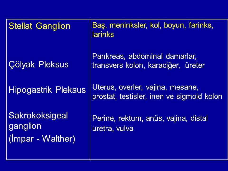 Sakrokoksigeal ganglion (İmpar - Walther)