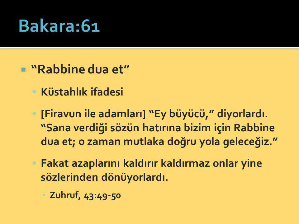 Bakara:61 Rabbine dua et Küstahlık ifadesi