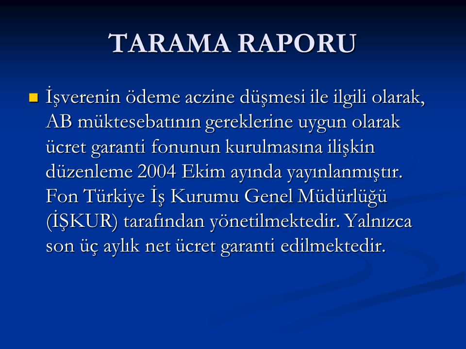 TARAMA RAPORU