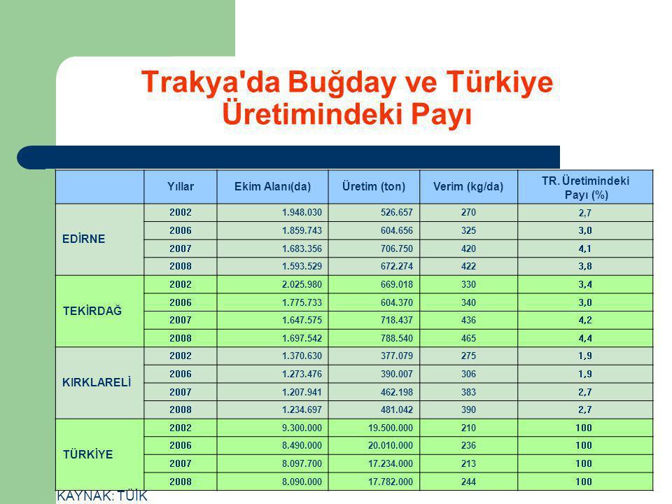 Trakya da Buğday ve Türkiye Üretimindeki Payı