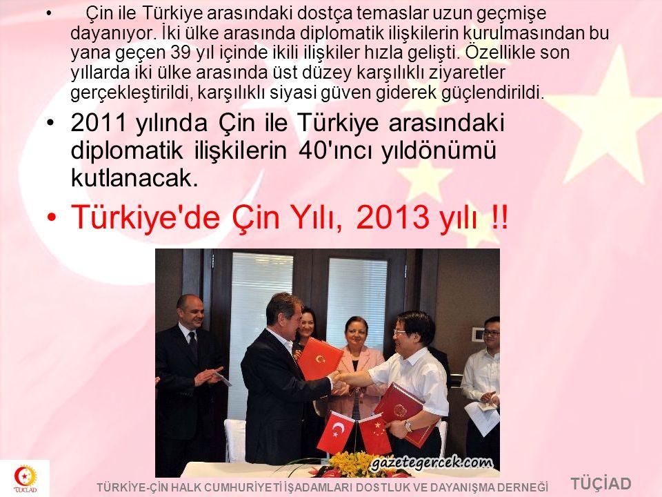 Türkiye de Çin Yılı, 2013 yılı !!
