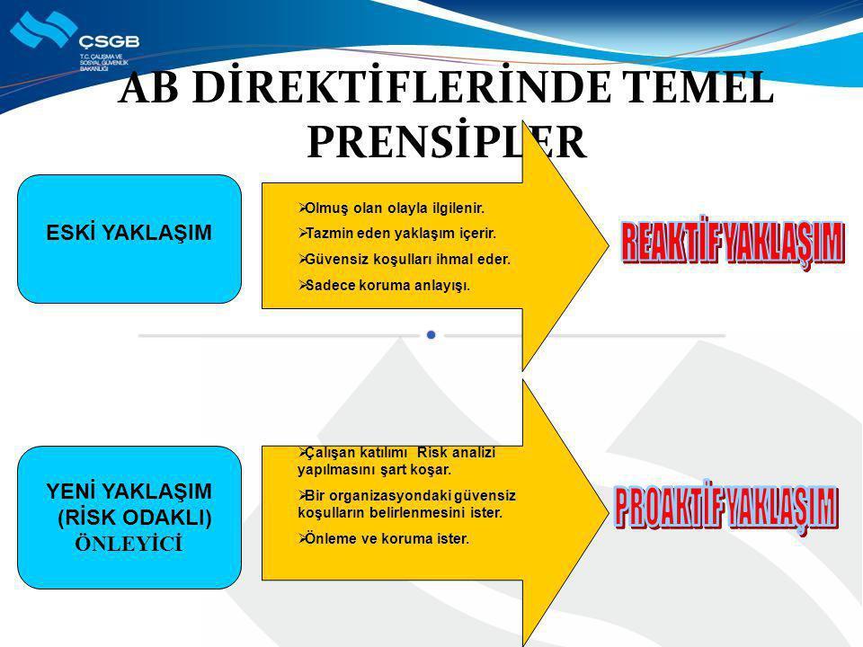 AB DİREKTİFLERİNDE TEMEL PRENSİPLER
