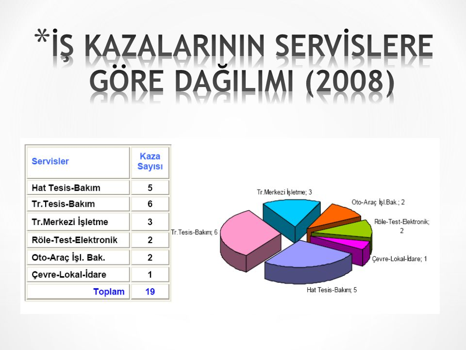 İŞ KAZALARININ SERVİSLERE GÖRE DAĞILIMI (2008)