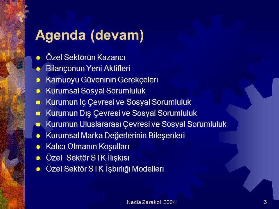 Agenda (devam) Özel Sektörün Kazancı Bilançonun Yeni Aktifleri