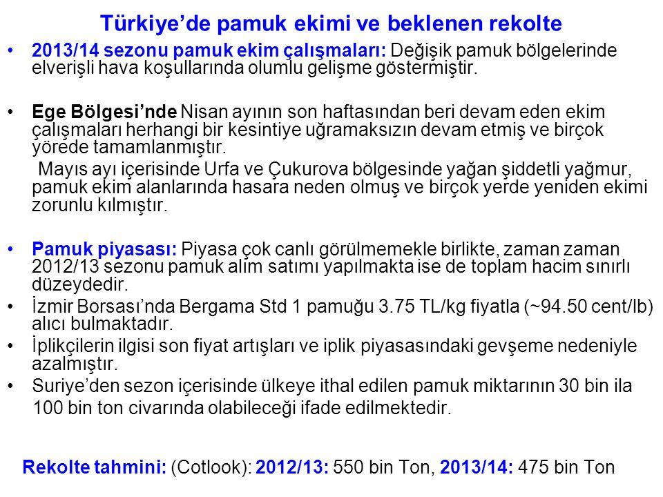 Türkiye'de pamuk ekimi ve beklenen rekolte