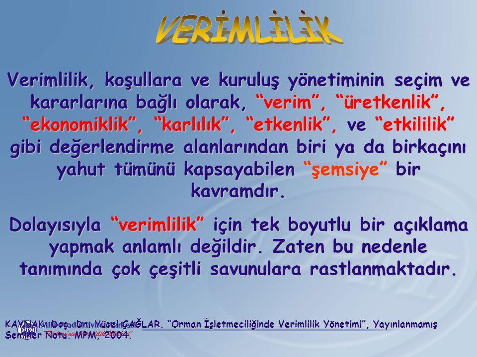 VERİMLİLİK